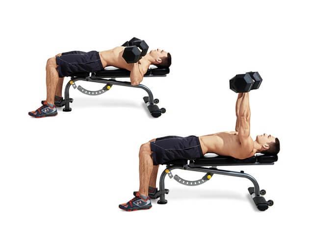 Đẩy ngực trên tạ đòn là bài tập ngực cơ bản và rất dễ thực hiện