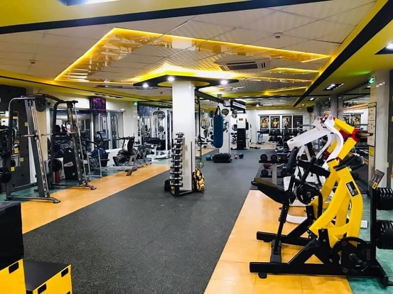 Gym - Bộ môn thể hình nhận được sự đón nhận đông đảo từ mọi người