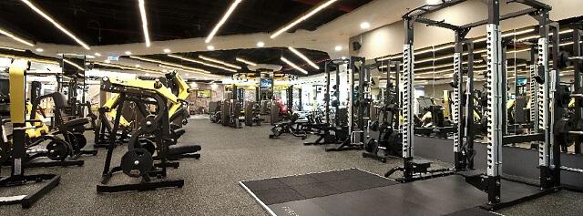 Hệ thống các bài tập tại Elite Fitness được xây dựng đa dạng và phù hợp với nhiều đối tượng người tập.