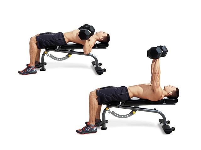 Lựa chọn tạ phù hợp với cơ thể để bài tập luyện có thể phát huy tối đa hiệu quả