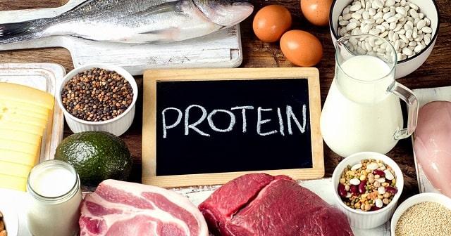 Protein quan trọng số 1 trong chế độ ăn uống tập gym