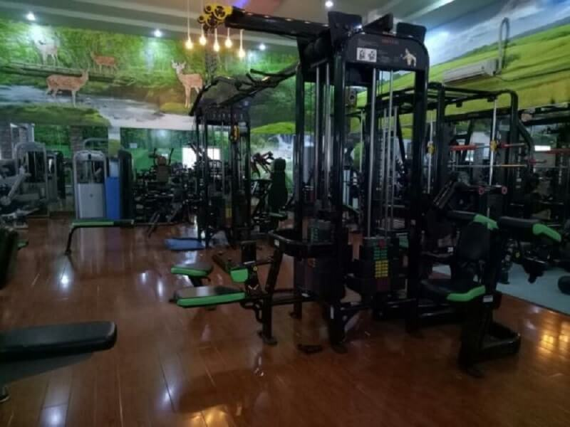 Trung tâm Gym T&V Fitness Center