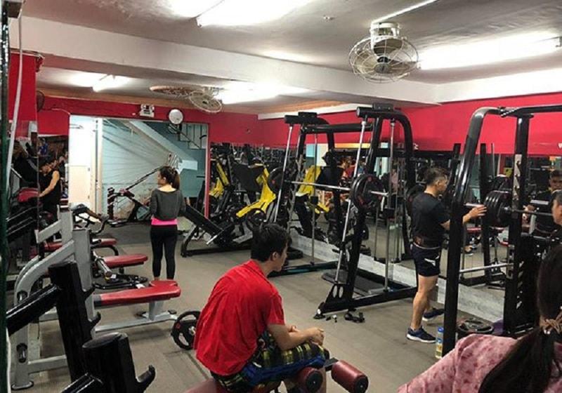Vì sao tập gym lại được nhiều người lựa chọn và đánh giá cao đến vậy?