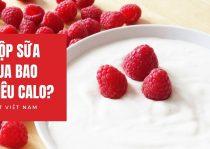 1 Hộp Sữa Chua Bao Nhiêu Calo?